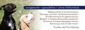 Leistungen der Hundeschule Franklin & DOGS aus Dortmund
